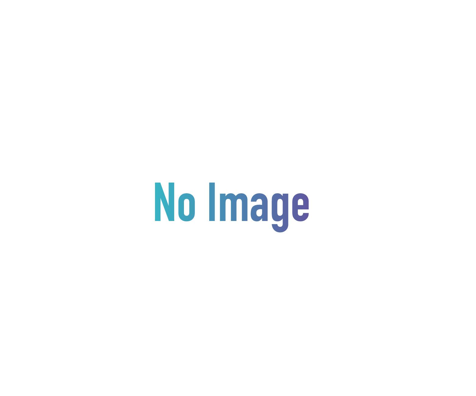 Greater Swiss Mountain Dog set